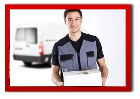 Parcel Delivery Man With A Van